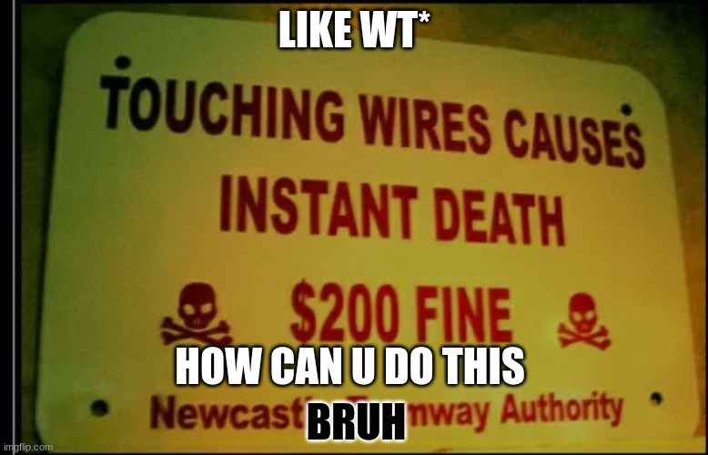wt |  LIKE WT*; HOW CAN U DO THIS; BRUH | image tagged in bruh | made w/ Imgflip meme maker
