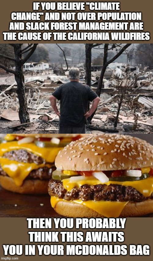 "yep |  IF YOU BELIEVE ""CLIMATE CHANGE"" AND NOT OVER POPULATION AND SLACK FOREST MANAGEMENT ARE THE CAUSE OF THE CALIFORNIA WILDFIRES; THEN YOU PROBABLY THINK THIS AWAITS YOU IN YOUR MCDONALDS BAG 