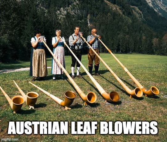 Austrian Leaf Blower |  AUSTRIAN LEAF BLOWERS | image tagged in austria,forest,city,trees | made w/ Imgflip meme maker
