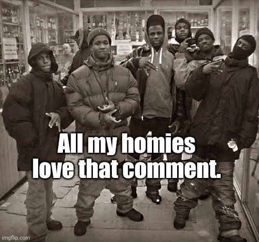 The meme comment I made: All my homies love that comment. | All my homies love that comment. | image tagged in all my homies love,memes,meme comments,comments,comment,meme | made w/ Imgflip meme maker