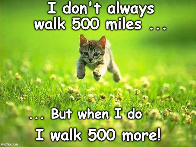 500 Miles! |  I don't always walk 500 miles ... ... But when I do; I walk 500 more! | image tagged in kitten,hustle | made w/ Imgflip meme maker