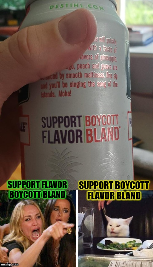 I Think the Cat's Right.... |  SUPPORT BOYCOTT FLAVOR BLAND; SUPPORT FLAVOR BOYCOTT BLAND | image tagged in smudge the cat,beer,boycott,flavor flav,funny memes,woman yelling at cat | made w/ Imgflip meme maker