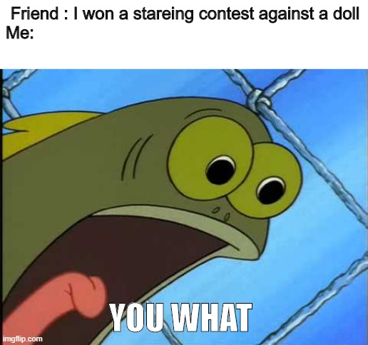 YOU WHAT |  Friend : I won a stareing contest against a doll Me:; YOU WHAT | image tagged in you what | made w/ Imgflip meme maker
