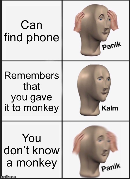 Panik Kalm monkey |  Can find phone; Remembers that you gave it to monkey; You don't know a monkey | image tagged in memes,panik kalm panik,monkey | made w/ Imgflip meme maker