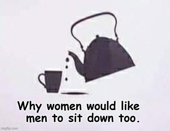 Women sit, men stand ! |  Why women would like   men to sit down too. | image tagged in peeing | made w/ Imgflip meme maker