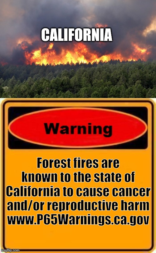 Warning! |  CALIFORNIA; Forest fires are known to the state of California to cause cancer and/or reproductive harm www.P65Warnings.ca.gov | image tagged in memes,warning sign,forest fire,california,california fires,warning | made w/ Imgflip meme maker