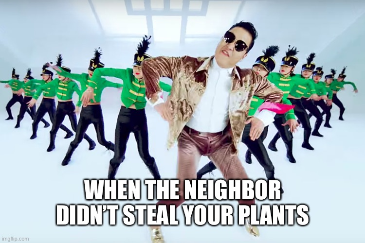 WHEN THE NEIGHBOR DIDN'T STEAL YOUR PLANTS | made w/ Imgflip meme maker