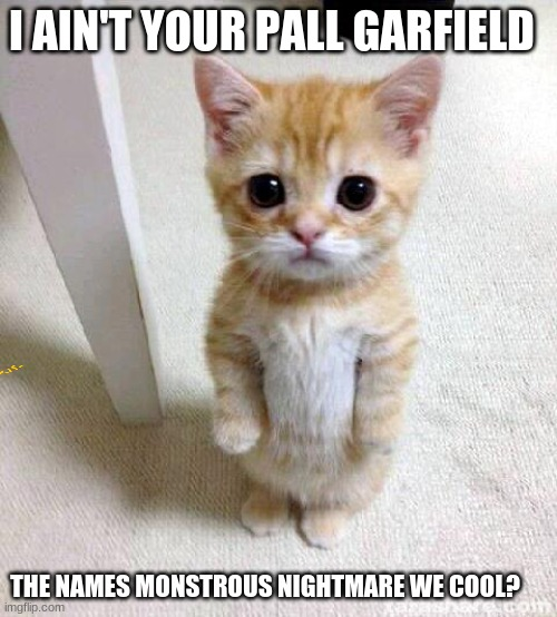 Cute Cat |  I AIN'T YOUR PALL GARFIELD; THE NAMES MONSTROUS NIGHTMARE WE COOL? | image tagged in memes,cute cat | made w/ Imgflip meme maker