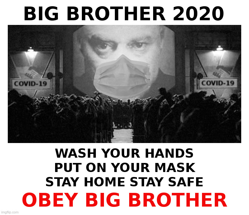 Big Brother 2020 | image tagged in big brother,2020,covid-19,coronavirus,lockdown,forever | made w/ Imgflip meme maker