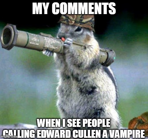 Bazooka Squirrel |  MY COMMENTS; WHEN I SEE PEOPLE CALLING EDWARD CULLEN A VAMPIRE | image tagged in memes,bazooka squirrel | made w/ Imgflip meme maker
