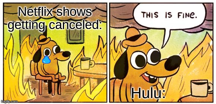 This Is Fine |  Netflix shows getting canceled:; Hulu: | image tagged in memes,this is fine,netflix,hulu,competition | made w/ Imgflip meme maker