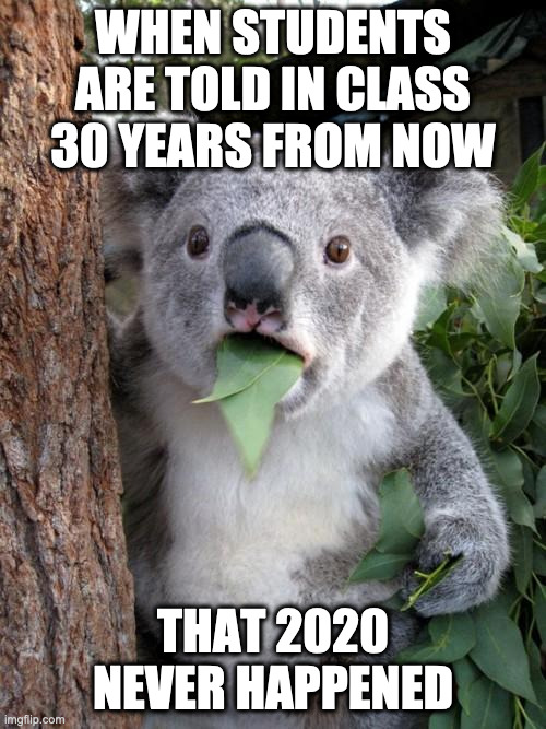 When Students in Class are told 30 years from now that 2020 never happened |  WHEN STUDENTS ARE TOLD IN CLASS 30 YEARS FROM NOW; THAT 2020 NEVER HAPPENED | image tagged in memes,surprised koala | made w/ Imgflip meme maker