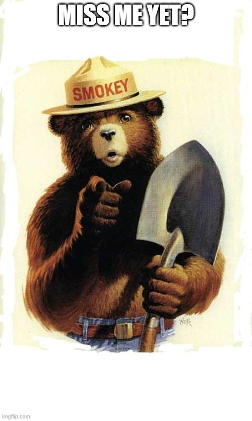 Smokey The Bear |  MISS ME YET? | image tagged in smokey the bear,fire,climate change,memes,not funny | made w/ Imgflip meme maker
