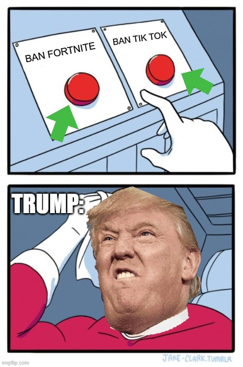 Two Buttons |  BAN TIK TOK; BAN FORTNITE; TRUMP: | image tagged in memes,two buttons | made w/ Imgflip meme maker