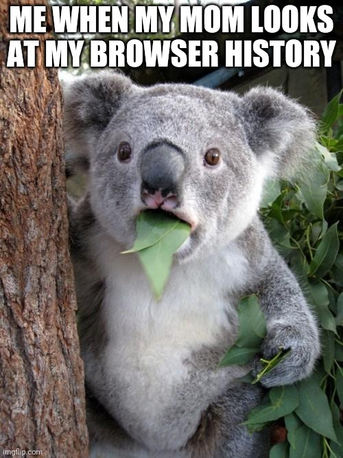 Crap!!! |  ME WHEN MY MOM LOOKS AT MY BROWSER HISTORY | image tagged in memes,surprised koala | made w/ Imgflip meme maker