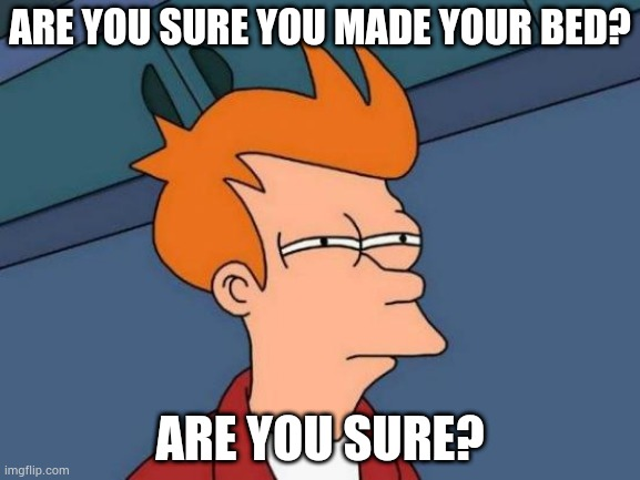Yes mom |  ARE YOU SURE YOU MADE YOUR BED? ARE YOU SURE? | image tagged in memes,futurama fry | made w/ Imgflip meme maker