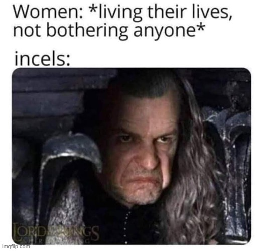 The whole incel point-of-view is just a new coating on sexism that tries to claim victimhood status for antisocial men. | image tagged in incel,sexism,misogyny,sexist,antisocial,repost | made w/ Imgflip meme maker