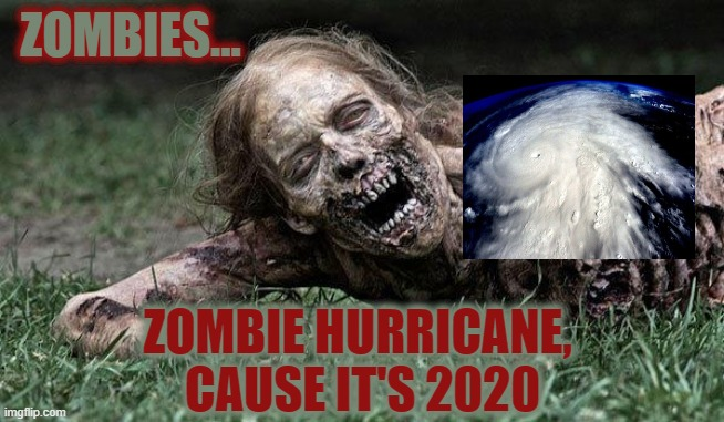 Cause 2020 couldn't get any worse, right? |  ZOMBIES... ZOMBIE HURRICANE,  CAUSE IT'S 2020 | image tagged in walking dead zombie,zombies,hurricane,2020 sucks,2020 | made w/ Imgflip meme maker