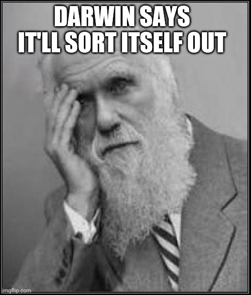 DARWIN SAYS IT'LL SORT ITSELF OUT | image tagged in darwin facepalm | made w/ Imgflip meme maker