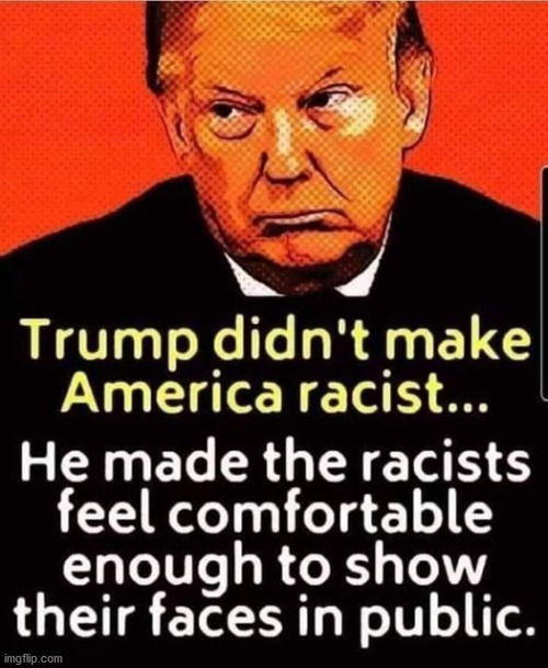 tRUMPf normalizes hatred toward black people.  He insults them and is critical of their concerns. | image tagged in racist,racism,blm | made w/ Imgflip meme maker