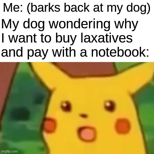 We know it, you don't know dog. |  Me: (barks back at my dog); My dog wondering why I want to buy laxatives and pay with a notebook: | image tagged in memes,surprised pikachu | made w/ Imgflip meme maker