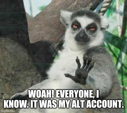 WOAH! EVERYONE, I KNOW. IT WAS MY ALT ACCOUNT. | image tagged in memes,stoner lemur | made w/ Imgflip meme maker