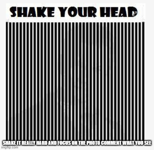 Crazy Illusion (shake your head and focus on the photo) |  SHAKE IT REALLY HARD AND FOCUS ON THE PHOTO COMMENT WHAT YOU SEE | image tagged in optical illusion,insane,awesome,shake | made w/ Imgflip meme maker
