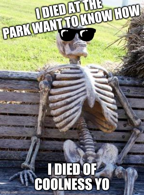 Waiting Skeleton |  I DIED AT THE PARK WANT TO KNOW HOW; I DIED OF COOLNESS YO | image tagged in memes,waiting skeleton | made w/ Imgflip meme maker