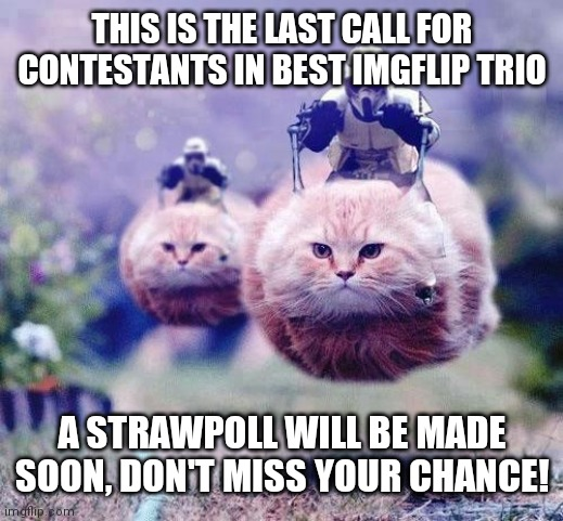 So far it's only two trios |  THIS IS THE LAST CALL FOR CONTESTANTS IN BEST IMGFLIP TRIO; A STRAWPOLL WILL BE MADE SOON, DON'T MISS YOUR CHANCE! | image tagged in storm trooper cats | made w/ Imgflip meme maker
