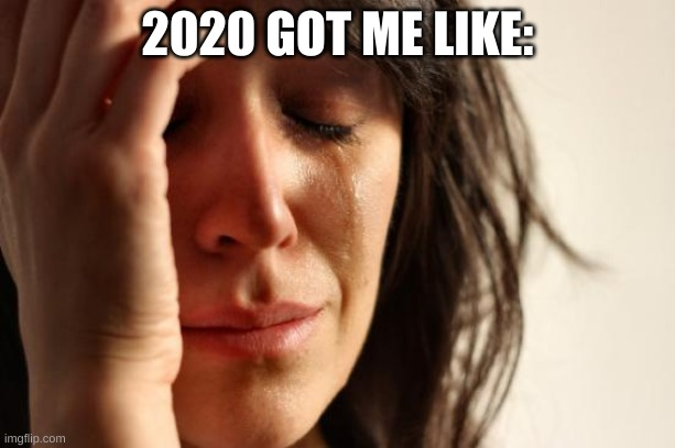 First World Problems |  2020 GOT ME LIKE: | image tagged in memes,first world problems | made w/ Imgflip meme maker