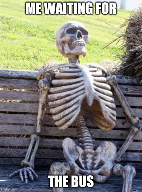 really? imgflip |  ME WAITING FOR; THE BUS | image tagged in memes,waiting skeleton,funny memes,aint nobody got time for that | made w/ Imgflip meme maker