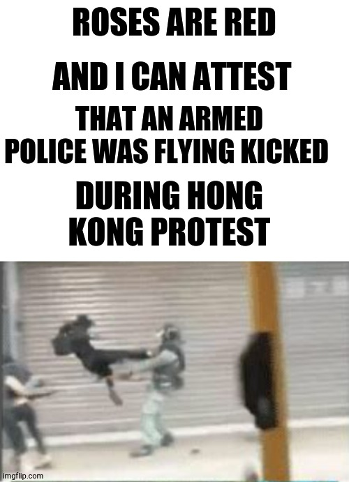 a poem |  ROSES ARE RED; AND I CAN ATTEST; THAT AN ARMED POLICE WAS FLYING KICKED; DURING HONG KONG PROTEST | image tagged in blank white template,protesters,poem,roses are red,china,kung fu | made w/ Imgflip meme maker
