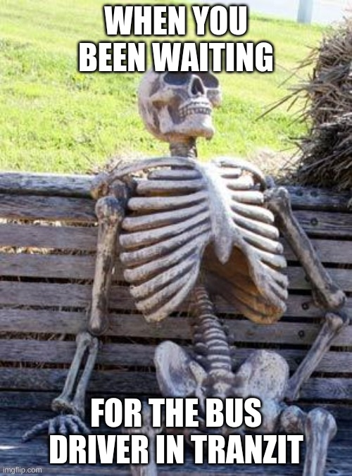 Waiting Skeleton |  WHEN YOU BEEN WAITING; FOR THE BUS DRIVER IN TRANZIT | image tagged in memes,waiting skeleton | made w/ Imgflip meme maker