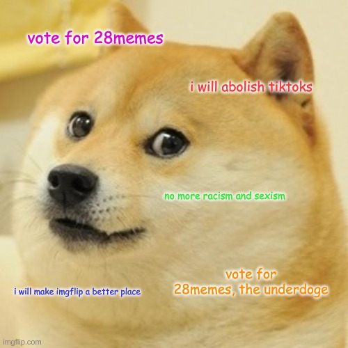 Vote for me |  vote for 28memes; i will abolish tiktoks; no more racism and sexism; vote for 28memes, the underdoge; i will make imgflip a better place | image tagged in memes,doge | made w/ Imgflip meme maker