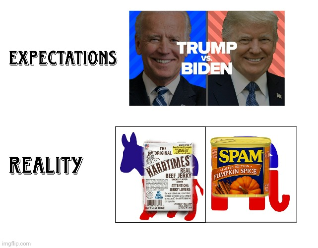 Expectations vs Reality | image tagged in all screwed 2020,trump,biden,spam,jerky | made w/ Imgflip meme maker