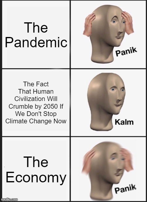 Those priorities, though (AKA Extinction goals). |  The Pandemic; The Fact That Human Civilization Will Crumble by 2050 If We Don't Stop Climate Change Now; The Economy | image tagged in memes,panik kalm panik | made w/ Imgflip meme maker