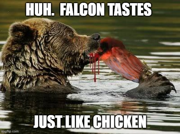 Tastes Like Chicken |  HUH.  FALCON TASTES; JUST LIKE CHICKEN | image tagged in bears,chicago bears,falcons,atlanta falcons,bears vs falcons | made w/ Imgflip meme maker