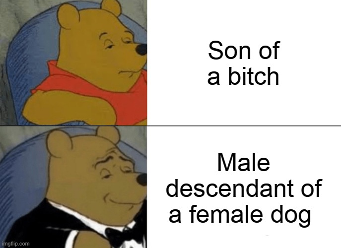 Tuxedo Winnie The Pooh |  Son of a bitch; Male descendant of a female dog | image tagged in memes,tuxedo winnie the pooh | made w/ Imgflip meme maker