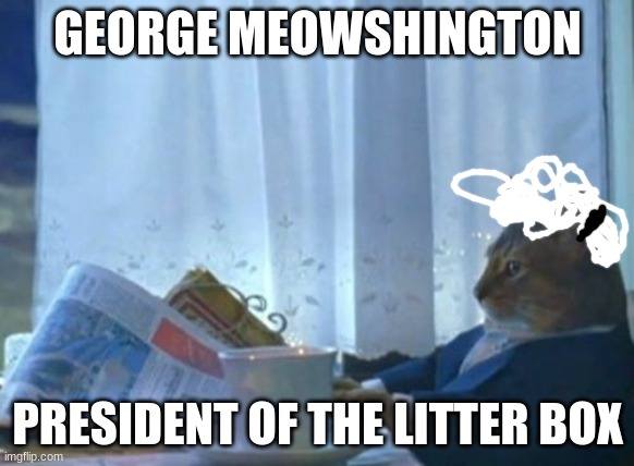George Meowshington |  GEORGE MEOWSHINGTON; PRESIDENT OF THE LITTER BOX | image tagged in memes,i should buy a boat cat,president | made w/ Imgflip meme maker