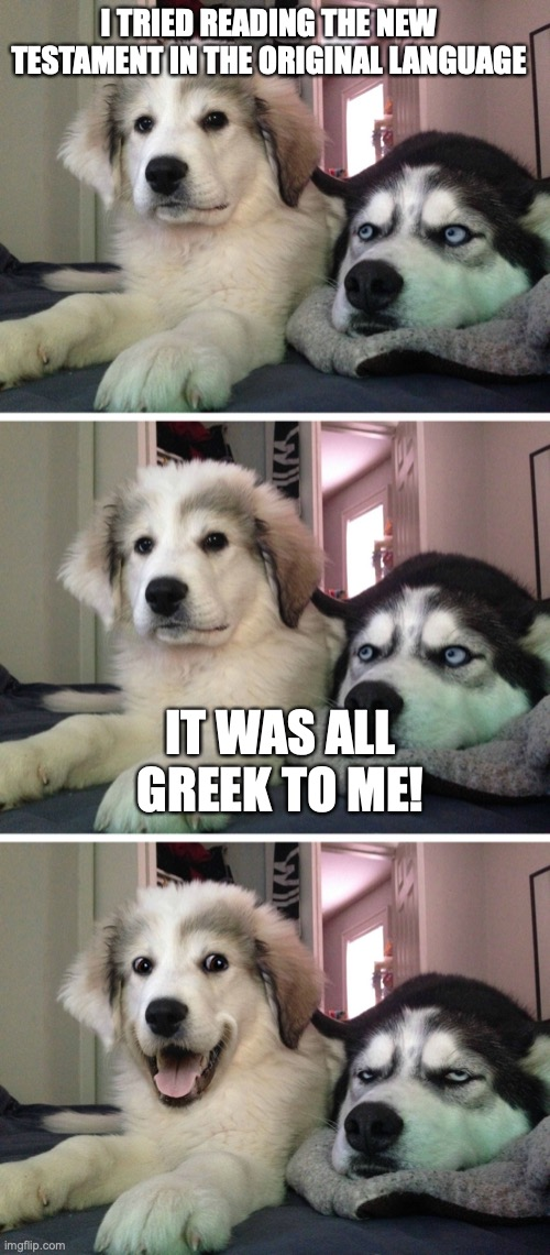 Bad pun dogs |  I TRIED READING THE NEW TESTAMENT IN THE ORIGINAL LANGUAGE; IT WAS ALL GREEK TO ME! | image tagged in bad pun dogs | made w/ Imgflip meme maker