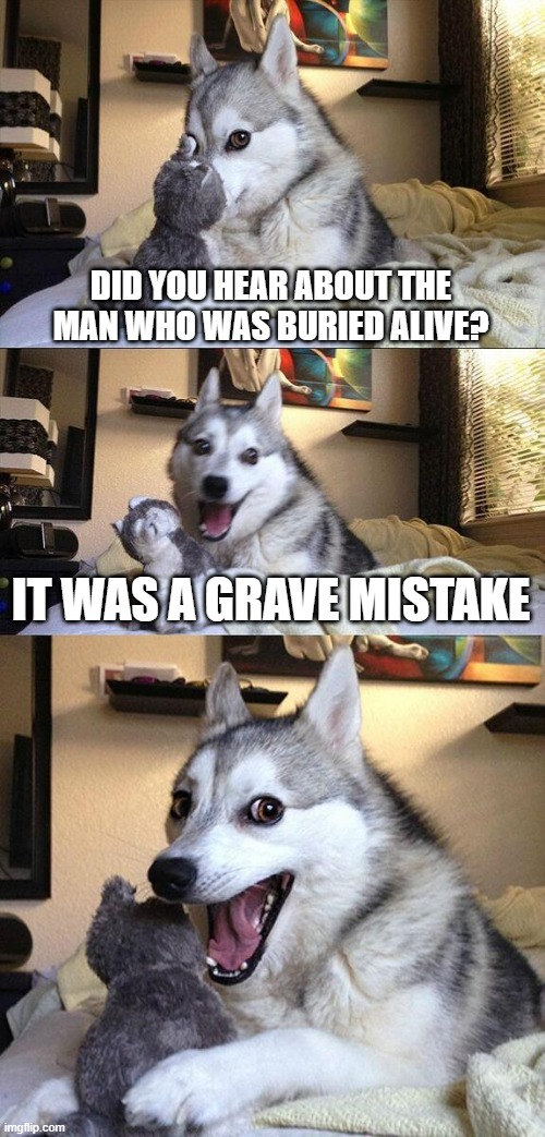The Plot Puns |  DID YOU HEAR ABOUT THE MAN WHO WAS BURIED ALIVE? IT WAS A GRAVE MISTAKE | image tagged in memes,bad pun dog | made w/ Imgflip meme maker