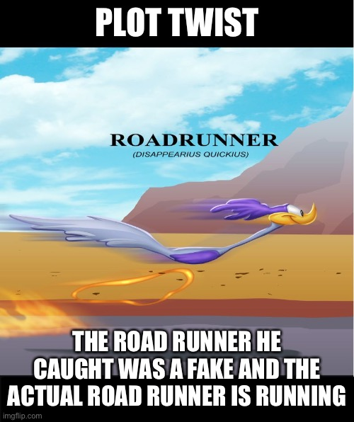RoadRunner | PLOT TWIST THE ROAD RUNNER HE CAUGHT WAS A FAKE AND THE ACTUAL ROAD RUNNER IS RUNNING | image tagged in roadrunner | made w/ Imgflip meme maker