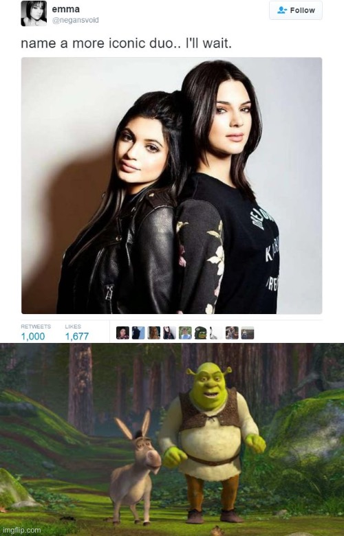 image tagged in name a more iconic duo,memes,shrek,funny | made w/ Imgflip meme maker