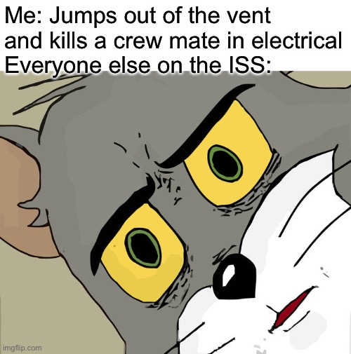 There is 1 impostor among us |  Me: Jumps out of the vent and kills a crew mate in electrical Everyone else on the ISS: | image tagged in memes,unsettled tom | made w/ Imgflip meme maker