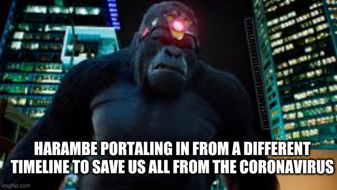 The hero we don't deserve |  IMJUSTAMEMEANDLIFEISANIGHTMARE; HARAMBE PORTALING IN FROM A DIFFERENT TIMELINE TO SAVE US ALL FROM THE CORONAVIRUS | image tagged in harambe | made w/ Imgflip meme maker