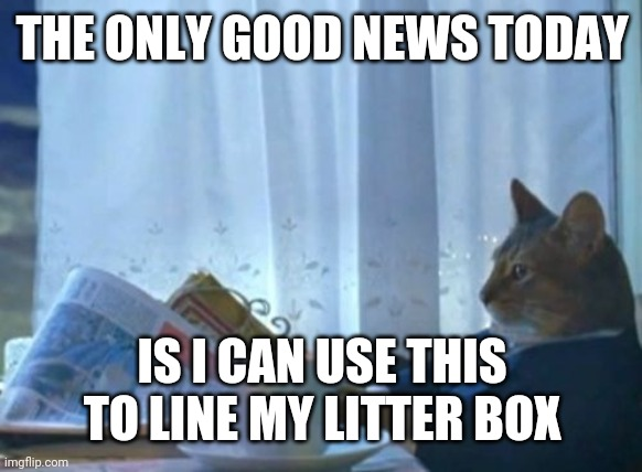 I Should Buy A Boat Cat |  THE ONLY GOOD NEWS TODAY; IS I CAN USE THIS TO LINE MY LITTER BOX | image tagged in memes,i should buy a boat cat | made w/ Imgflip meme maker
