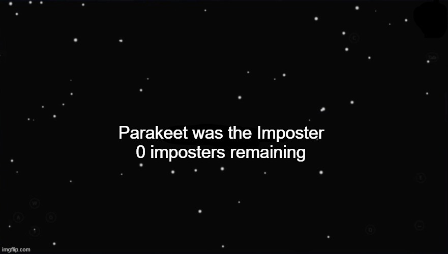 X Was the Impostor | Parakeet was the Imposter 0 imposters remaining | image tagged in x was the impostor | made w/ Imgflip meme maker