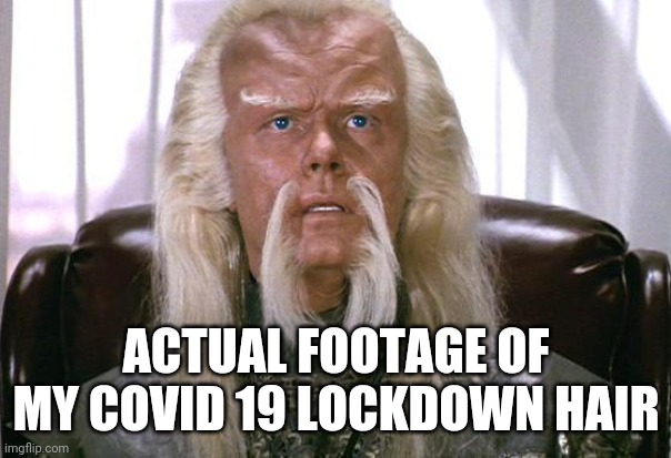 No Barber, No Problem |  ACTUAL FOOTAGE OF MY COVID 19 LOCKDOWN HAIR | image tagged in star trek politics,hair,covid-19 | made w/ Imgflip meme maker
