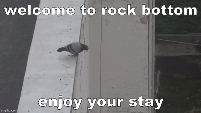 rock bottom in real life |  welcome to rock bottom; enjoy your stay | image tagged in spongebob,reference,suicide,pigeon | made w/ Imgflip meme maker