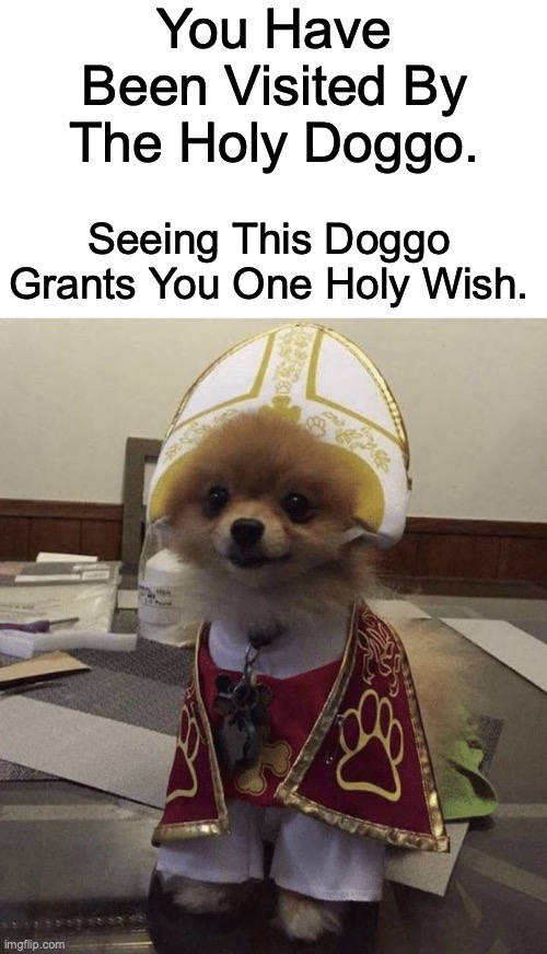 Comment Your Wish Down Below! |  You Have Been Visited By The Holy Doggo. Seeing This Doggo Grants You One Holy Wish. | image tagged in holy doggo | made w/ Imgflip meme maker